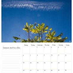 June / Junio