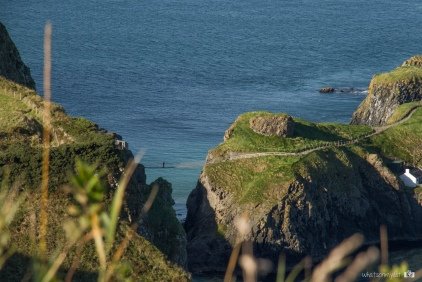 The rope bridge Northern Ireland general view